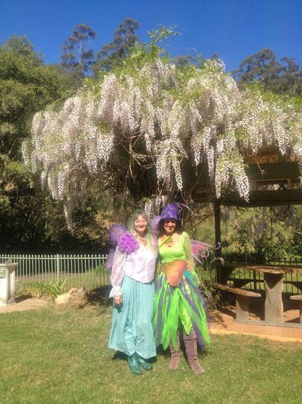 fairy festival 5