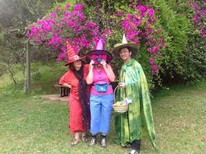 wizard festival