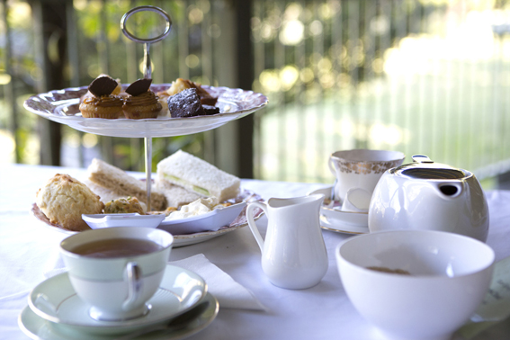 Tranquility High Tea with Emilia Krumm Apr 2019 @ Forest of Tranquility | Ourimbah | New South Wales | Australia